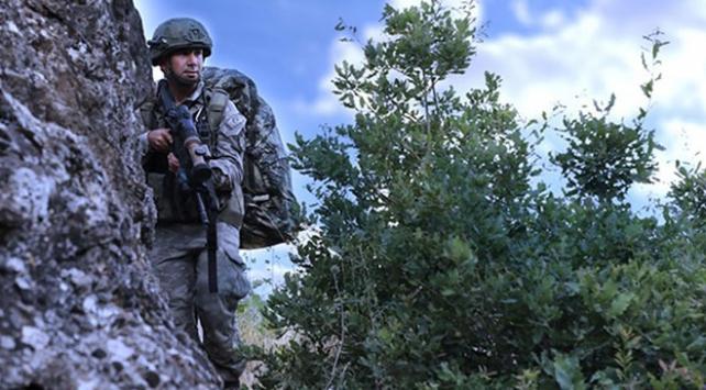 Şırnak'ın Silopi ilçesinde, saldırı hazırlığındaki PKK'lı terörist yakalandı.
